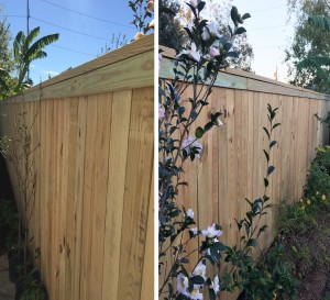 Both sides of this fence look identical, great for good neighbors!